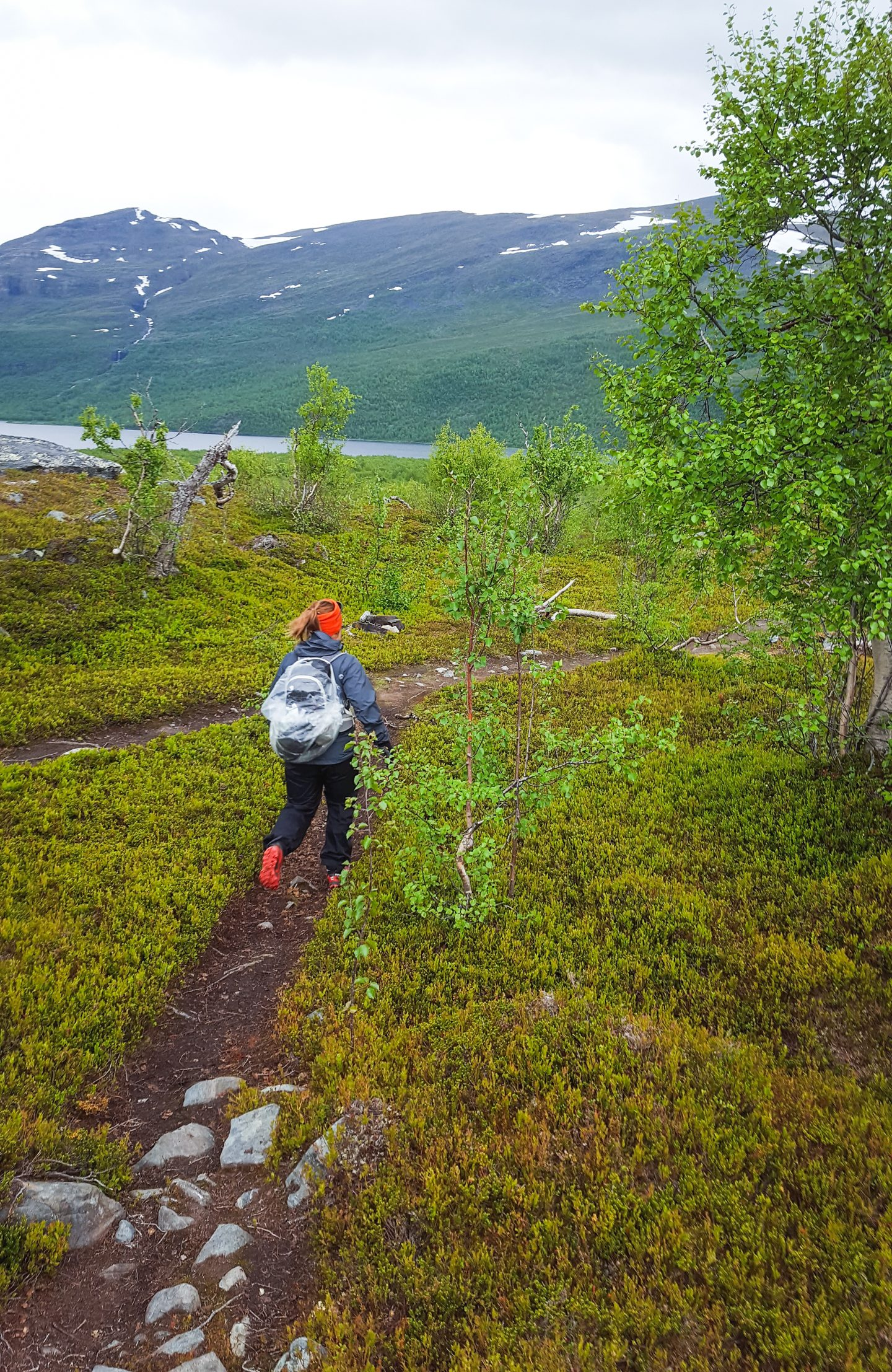 trail running kungsleden - downhill teusajaure - Photo © Amanda Matti